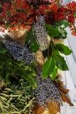Bundles of  blue lavender Stock Photos