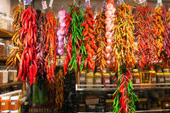 Bundles of chili pepper and garlic Royalty Free Stock Photos