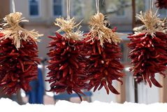 Bundles of Chili Peppers. Downtown Santa Fe has bundles of spicy hot chili peppers.  Four bundles hang down over a bank of newly fallen snow.  Ice melts and Stock Photos
