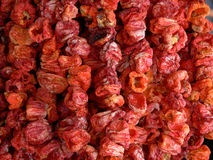 Bundles of dry red pepper. The market in Turkey. A background, the invoice Royalty Free Stock Photos