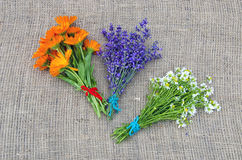 Bundles of fresh chamomile, calendula and lavender herbs on linen Royalty Free Stock Photography