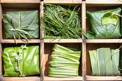 Bundles of grass and leaves. Several bundles of leaves and grass, neatly displayed in a wooden case or divided shelf Stock Photography