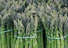 Bundles of green asparagus Royalty Free Stock Images