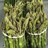 Bundles of green cultivated asparagus. For sale royalty free stock image