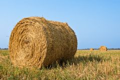 Bundles of hay Royalty Free Stock Photos