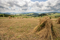 Bundles of hay with a panoramic view of Pieniny. Polish summer in the mountains. Meadows with small bundles of hay after harvest Royalty Free Stock Images