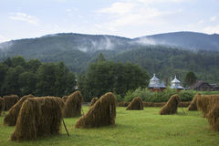Bundles of hay in the village Stock Images