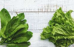 Bundles of leaves of lettuce and sorrel on a light wooden background. A horizontal frame Royalty Free Stock Photo