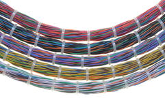Bundles of network cables. With cable ties Royalty Free Stock Photography