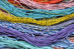 Bundles network cables Stock Photography