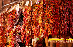 Bundles of peppers at market Royalty Free Stock Photo