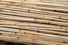 Bundles of reed Royalty Free Stock Image