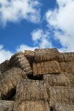 Bundles of straw Royalty Free Stock Photo