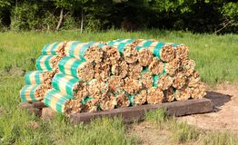 Bundles of Wood Sticks Wrapped in Green Shrink Wrap Royalty Free Stock Images