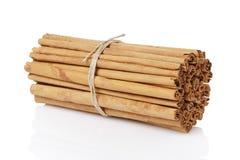 Bundna riktiga ceylon kanelbruna pinnar som isoleras på royaltyfri bild