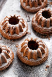 Bundtcake met gepoederde suiker wordt bestrooid die royalty-vrije stock foto