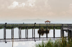 Bung Bua(lotus pond) Khao Sam Roi Yot National Park Stock Photo