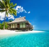 在惊人的海滩的热带bungallow与棕榈树 免版税库存照片
