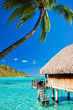 Bungallow and palm with steps to amazing lagoon Royalty Free Stock Image