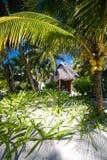 Bungalow ad una stazione turistica tropicale Immagine Stock