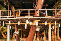 Bungalow auf einem tropischen Strand Lizenzfreie Stockbilder
