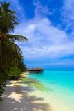 Bungalow dell'acqua su un'isola tropicale Immagine Stock