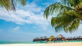 Bungalow di legno sui precedenti di una spiaggia sabbiosa con le palme alte, Maldive Fotografie Stock Libere da Diritti