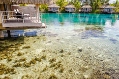 Bungalow di Overwater, Polinesia francese Fotografie Stock