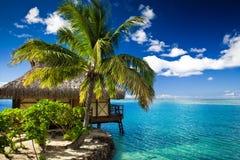 Bungalow e palmeira ao lado da lagoa fotografia de stock