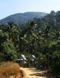 Bungalow en kokospalm royalty-vrije stock afbeeldingen