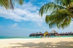 Bungalow esotico sui precedenti di una spiaggia sabbiosa con le palme alte, Maldive Fotografia Stock Libera da Diritti