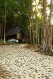 Bungalow in het regenwoud. Royalty-vrije Stock Afbeeldingen