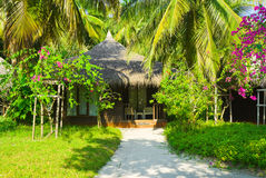 Bungalow in jungles. Flowers and trees Royalty Free Stock Photography