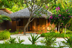 Bungalow in jungles Royalty Free Stock Images