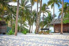 Bungalow och kokosnötter på stranden Royaltyfria Bilder
