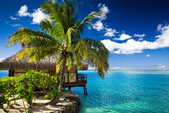 Bungalow and palm tree next to lagoon. Tropical bungalow and palm tree next to amazing blue lagoon Stock Photography