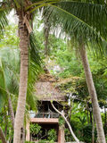 Bungalow in palm trees Stock Images