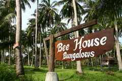 Bungalow in palm trees forest Royalty Free Stock Image