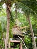 Bungalow in palmen stock afbeeldingen