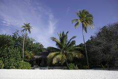 bungalow plażowa wyspa Maldives tropikalni Obraz Stock