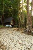 Bungalow in the rain forest. Royalty Free Stock Images