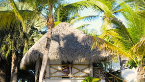 Bungalow on the shore around the palm trees. 1080p stock footage
