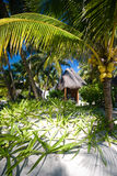 Bungalow at a tropical tourist resort Stock Image