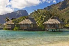 Bungalowe auf tropischer Insel von Moorea lizenzfreies stockbild