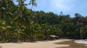 Bungalower på den tropiska stranden royaltyfri bild