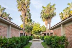 Bungalows alinhados com as palmeiras de Campofelice Imagens de Stock