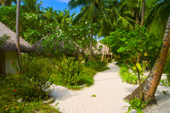 Bungalows on beach and sand pathway Royalty Free Stock Images