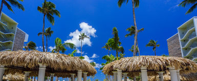 Bungalows and blue sky with palms stock photo