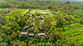 Bungalows in the jungle. Aerial view royalty free stock photos