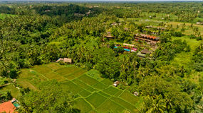 Bungalows in the jungle. Aerial view of swimming pool in a typical villas stock images